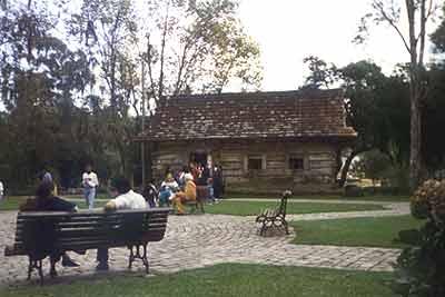 Bosque do Papa, Curitiba
