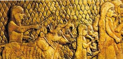 Agricultura na Mesopotâmia