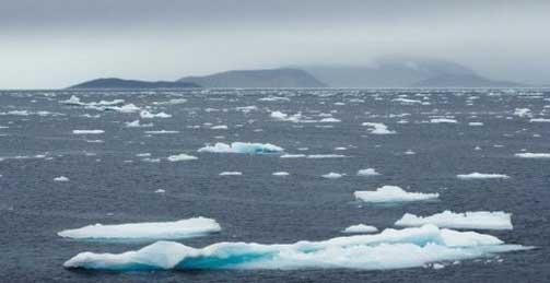 Paisagem ártica