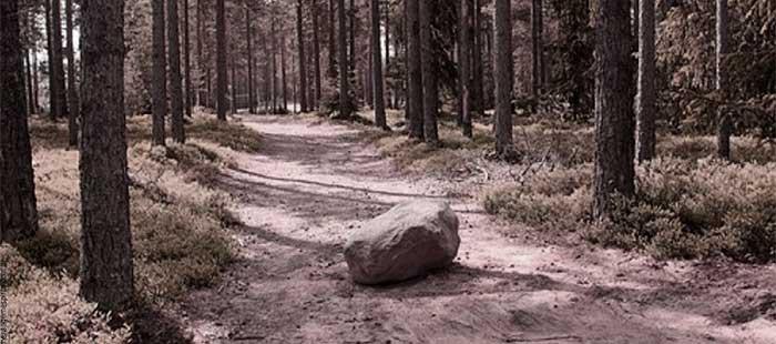 A pedra no meio do caminho